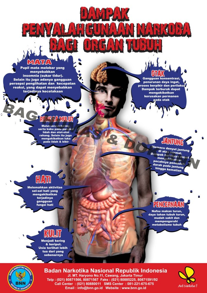 dampak-narkoba-bagi-tubuh1