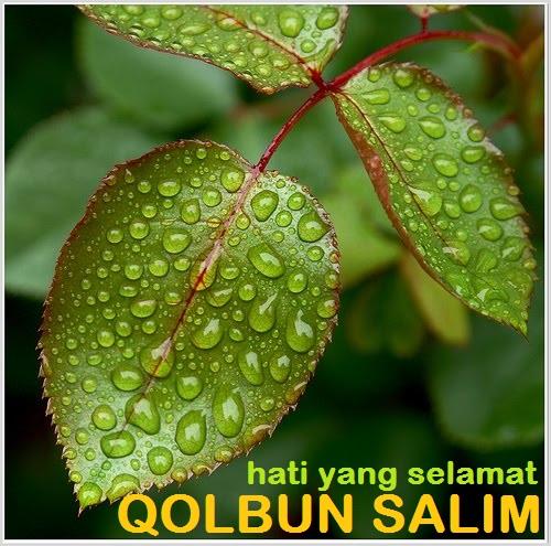 Qolbun Salim