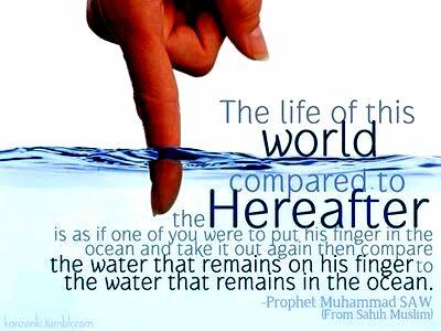 world life